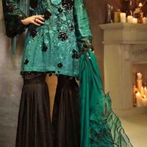 Crimson Chiffon Embroidered Collection