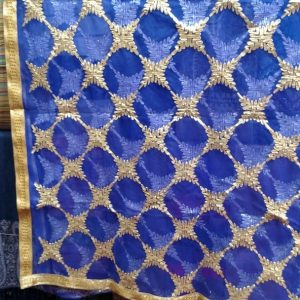 Fancy Net Dupatta Collection